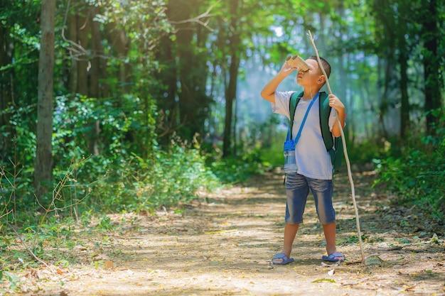 Kinderen gaan wandelen in de achtertuin met rugzakken op bospad explorer en avontuur met speelgoedverrekijker