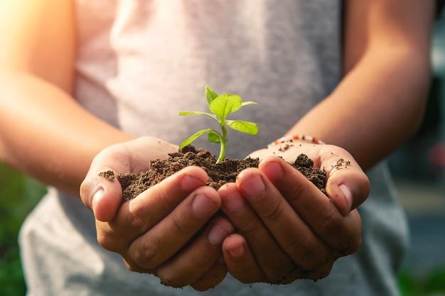 Kinderen hand met kleine boom voor aanplant. concept groene wereld eco