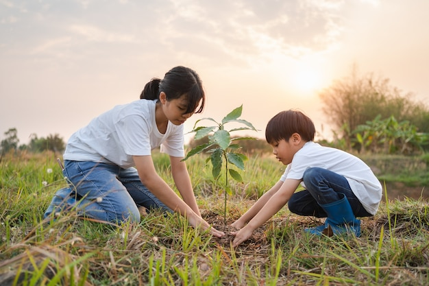 Kinderen helpen bij het planten van een boom in de tuin voor een veilige wereld. eco milieu concept