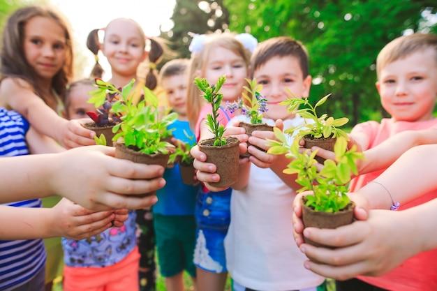 Kinderen houden van planten in bloempotten