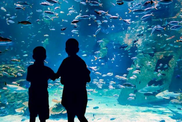 Kinderen in het aquarium kijken en observeren enthousiast de onderwaterwereld het slavenkoninkrijk b...