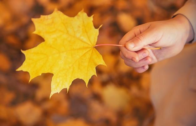 Kinderen in het park met herfstbladeren. selectieve aandacht.