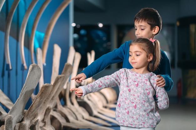 Kinderen kijken naar het skelet van een oude walvis in het museum voor paleontologie
