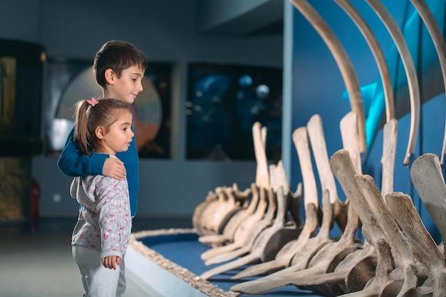 Kinderen kijken naar het skelet van een oude walvis in het museum voor paleontologie.