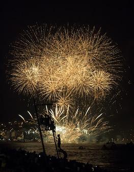 Kinderen kijken naar vuurwerk op het strand