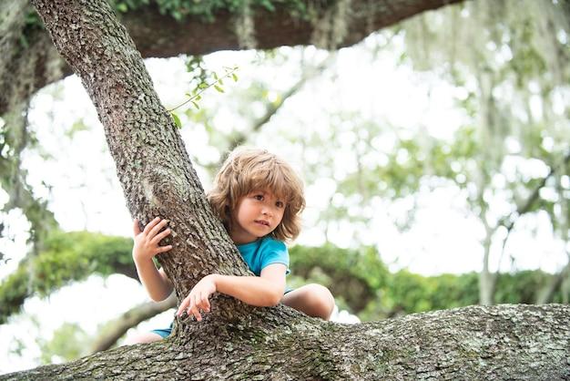 Kinderen klimmen in bomen. buiten portret van schattige preschool jongen kind klimt een boom.