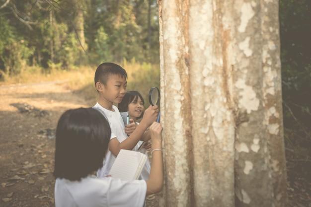 Kinderen leren in de bosnatuur