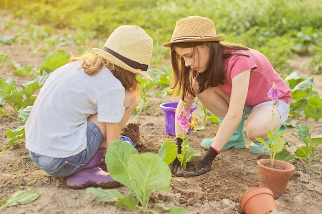 Kinderen meisjes bloeiende potplant in de grond planten. kleine mooie tuinmannen in handschoenen met tuinschoppen