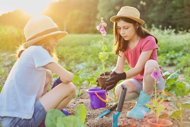 Kinderen meisjes planten bloeiende potplant in de grond. kleine mooie tuinmannen in handschoenen met tuinschoppen, achtergrond lente zomer landelijk landschap, gouden uur