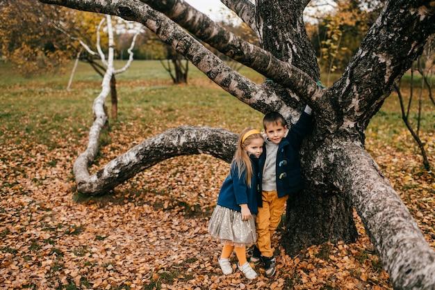 Kinderen poseren in herfst park