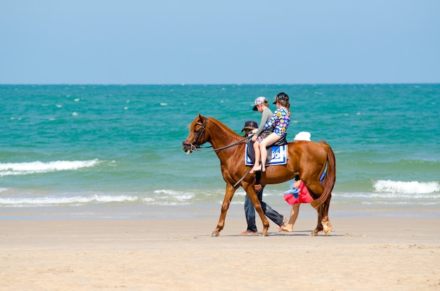 Kinderen rijden paarden, wandelen op het strand