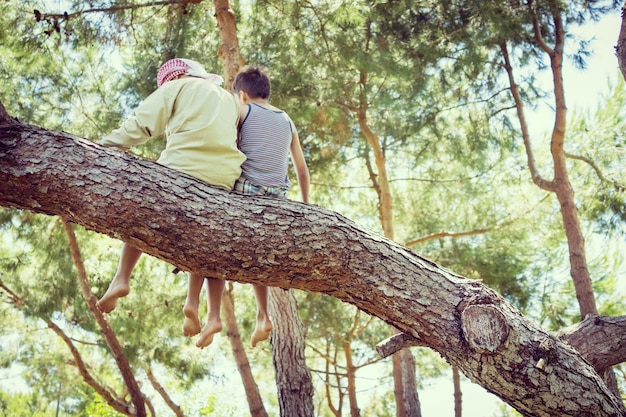 Kinderen samen zitten op boom