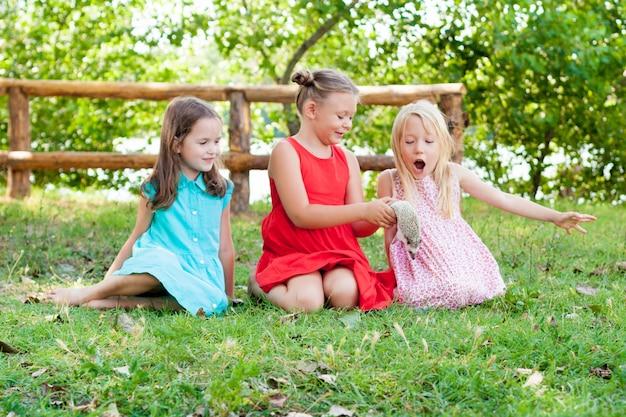 Kinderen spelen met een afrikaanse pygmee egel. kinderen en huisdieren.