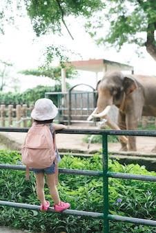Kinderen voeden aziatische olifanten in tropisch safaripark tijdens de zomervakantie. kinderen kijken naar dieren