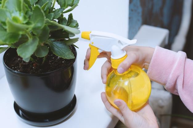 Kinderhanden gedrenkt en verzorgt een bloempot