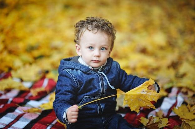 Kinky baby met blauwe ogen zitten met gele bladeren in de hand op een achtergrond van de herfst bladeren