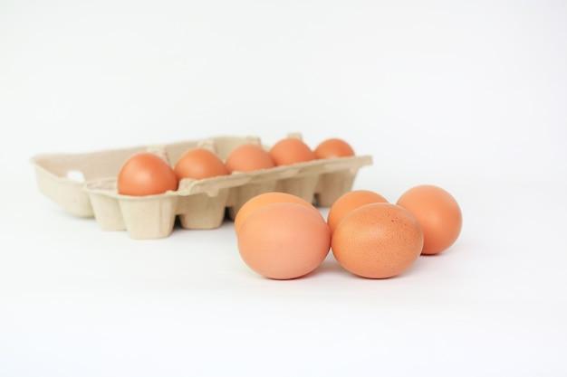 Kip bruine eieren en kartonnen doos van ei op wit