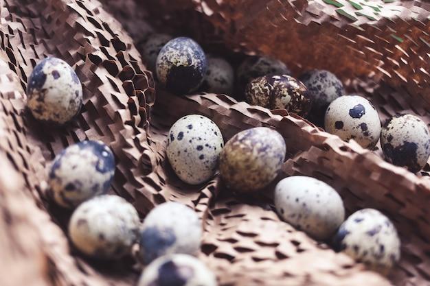 Kip en kwartelseieren in een nest op bruine lijst, familieconcept