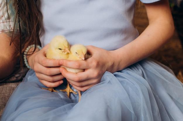 Kip in handen op een blauwe achtergrond