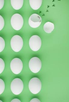 Kip ontsnapt uit ei, vrijheidsconceptie concept