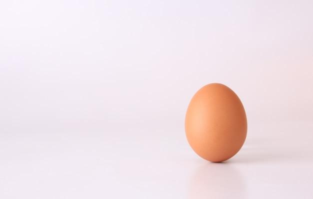 Kippenei geïsoleerd op een witte achtergrond