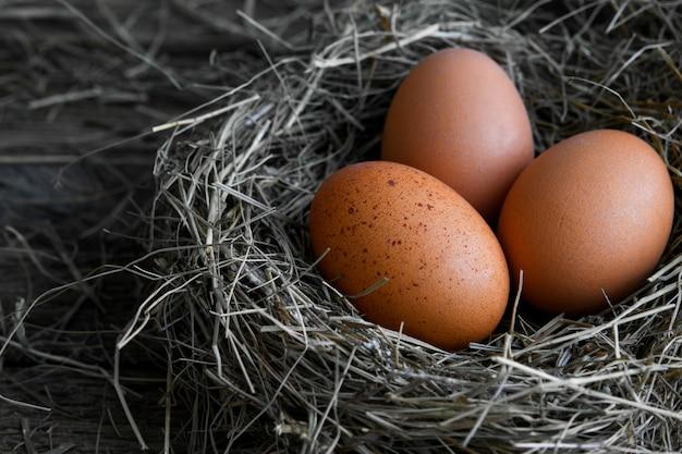 Kippeneieren in rieten nesten in de hoogste mening van het kippenhok. natuurlijke organische eieren in het hooi. verse kippeneieren.