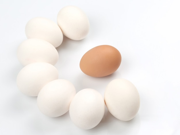 Kippeneieren op wit