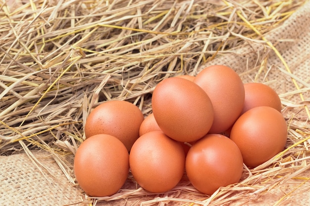 Kippeneieren van goede kwaliteit op het stro-nest op groene achtergrond wazig, met proteïne en voedingswaarde in lokale boerderij in thailand.