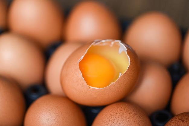 Kippeneieren verzamelen van boerderijproducten natuurlijk gezond eten concept