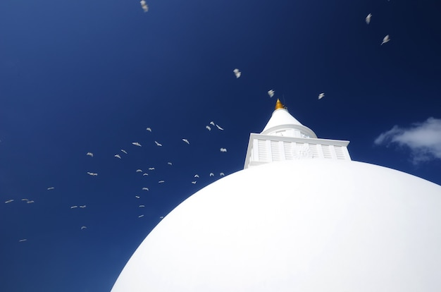Kiriwehera dagoba bij kataragama sri lanka