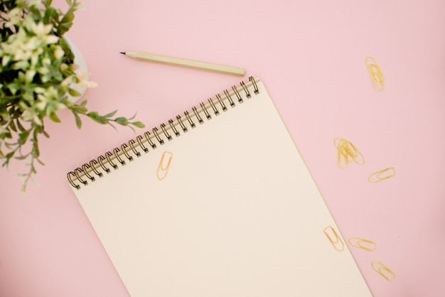 Kladblok en een groene plant op roze achtergrond met kopie ruimte
