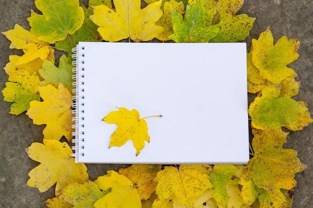 Kladblok ligt op een steen en een felgele groene gebeeldhouwde bladerenachtergrond met kopieerruimte Premium Foto