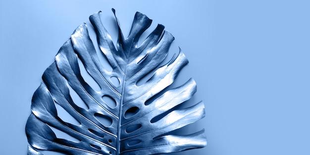 Klassiek blauw tropisch palmblad monstera op pastelblauw