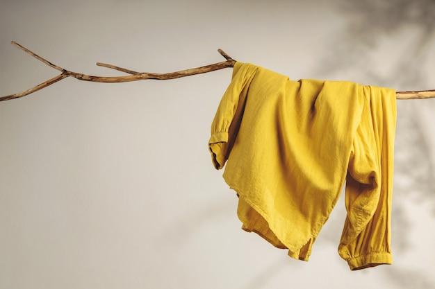 Kledingconcept. vrouwen dragen hangend aan gedroogde boomtak. schaduwschaduw op de witte muur