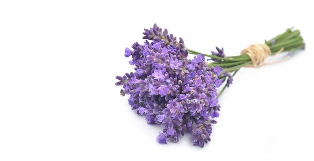 Klein boeket van lavendel geïsoleerd op een witte achtergrond