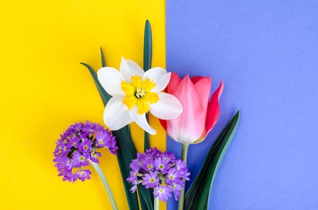 Klein boeket van lentetuinbloemen op heldere achtergrond.