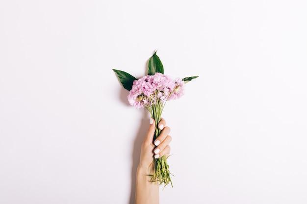 Klein boeket van roze anjers in een vrouwelijke hand met een manicure op wit