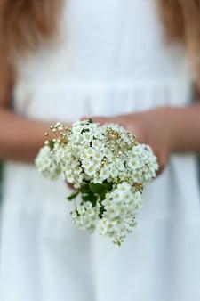 Klein boeket witte bloemen in de handen van een vrouw