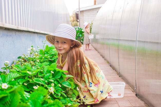Klein charmant mooi meisje in een kas oogst
