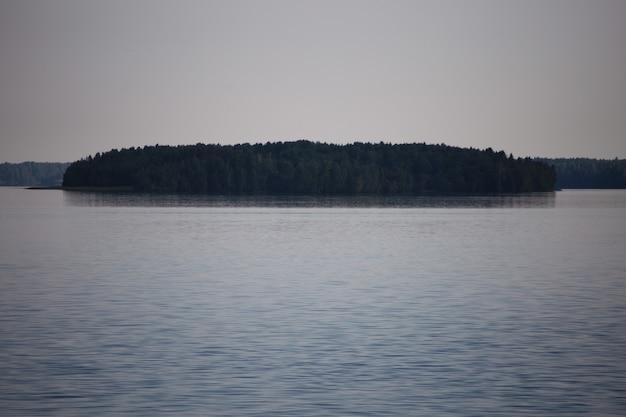 Klein eiland bedekt met bomen tussen het meer