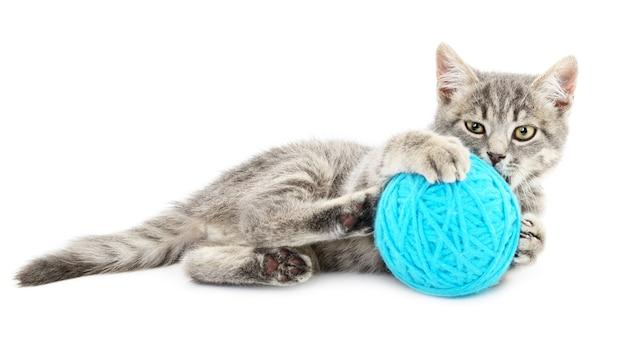 Klein grappig katje en kluwen van draad. geïsoleerd op witte achtergrond
