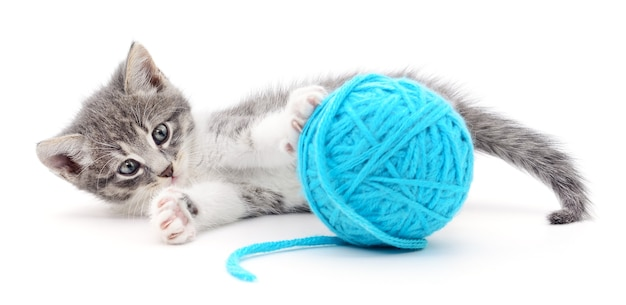 Klein grappig katje en kluwen van geïsoleerde draad