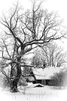 Klein houten boshuis bedekt met sneeuw