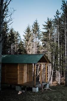 Klein houten huis omgeven door hoge bomen in een bos