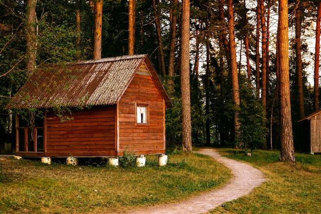 Klein houten huisje in een dennenbos, bosweg vlakbij het huis