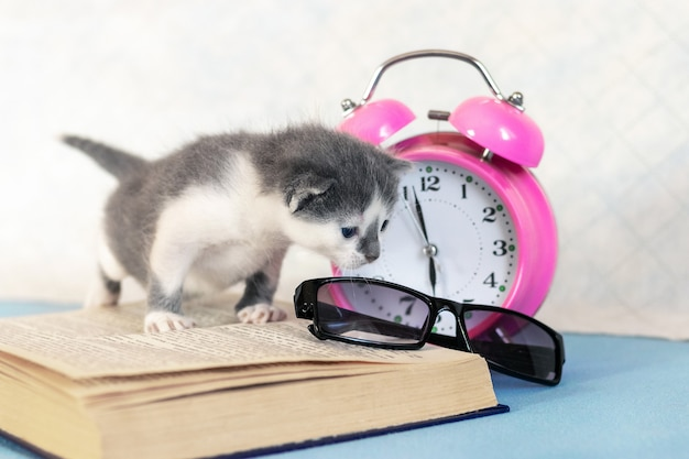Klein katje dichtbij een open boek, een wekker en een bril.