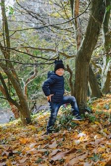 Klein kind dat plezier heeft in het herfstpark in gele bladeren