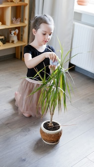 Klein kind meisje is kamerplanten een bloem in pot thuis. ze veegt de bladeren van een plant af