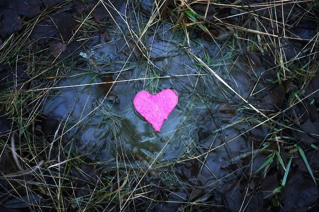 Klein kleurrijk hart in een plas