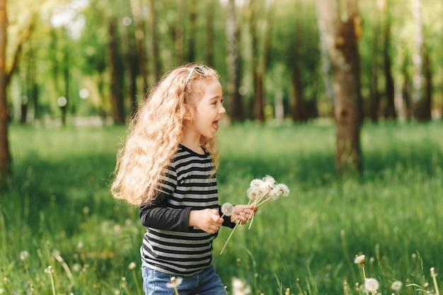 Klein lachend meisje verzamelt witte paardebloemen in een park in de zomer